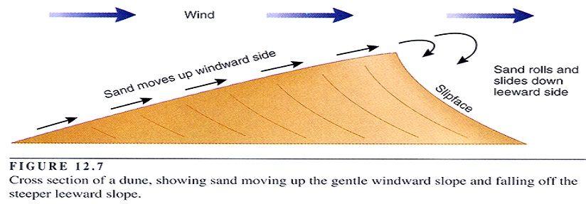 sand-dunes-2.jpg.8b4501e6d676bcee63c2e3faa91e177f.jpg