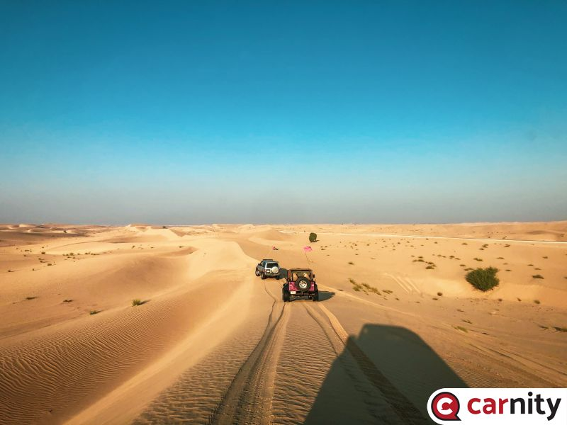Newbie - Solar Park - Dubai - 06 Nov 2020
