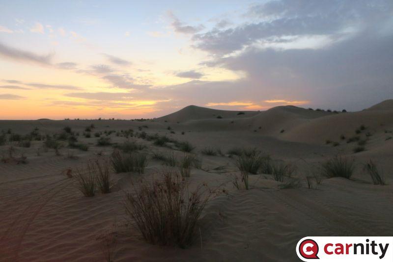 Newbie  - Solar Park - Dubai - 27 Nov 2020