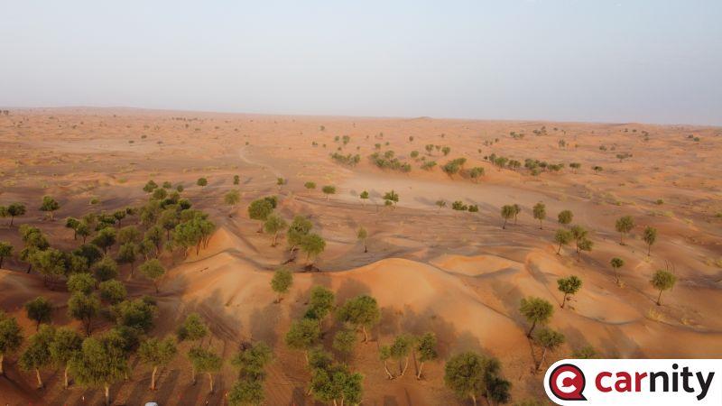 Newbie - Suwaydan to Mahafiz - Sharjah - 22 Jul 2021